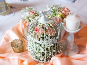Hochzeitsdeko Pader-Deko - Apricot - 07